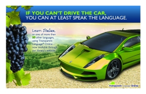 can't drive the car speak the language